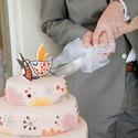 Big_aansnijden_taart