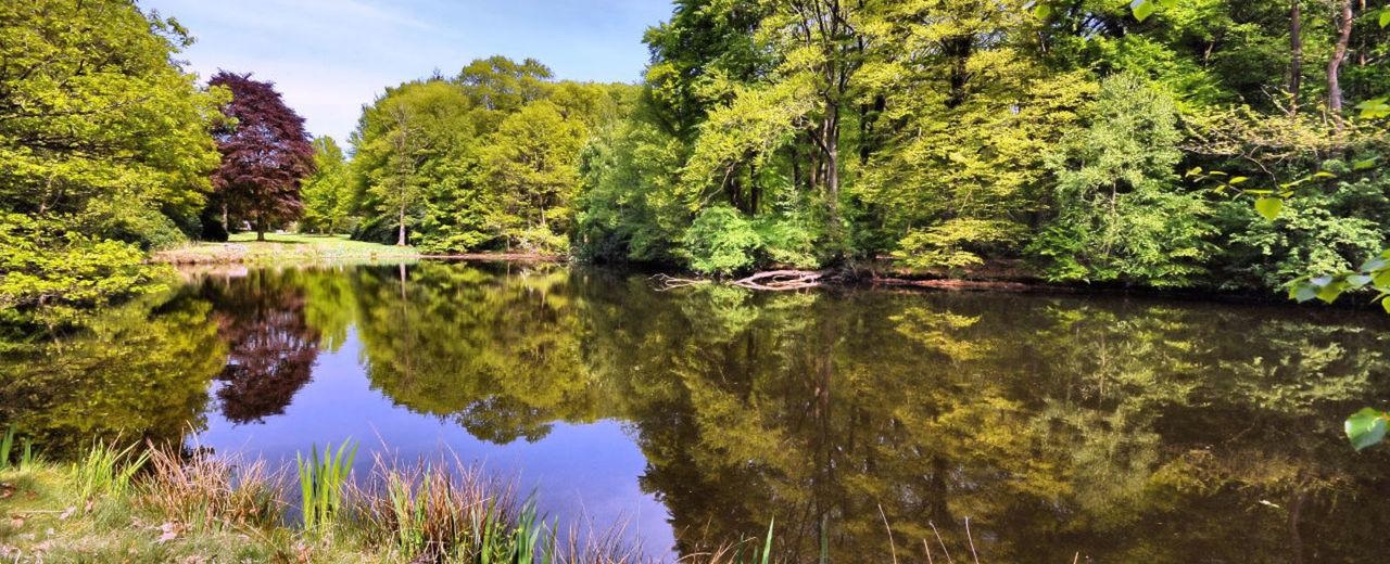 Large_trouwen_landgoed-den-vossenbosch_2