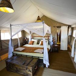 Big_huwelijksreis_serengeti_betterplaces_2