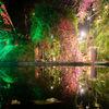 Mid_trouwen_amsterdam_arendshoeve_garden-of-amsterdam_10