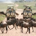 Big_jambo_safari_club_-_tanzania_voertuig