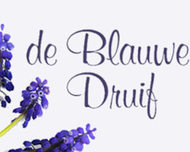 Large_bruidsbloemen_meppel_deblauwedruif_logo