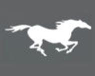 Large_trouwkoets_haarle_stalhouderijvossenspan_logo