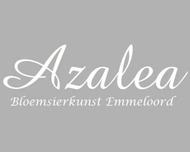 Large_bruidsbloemen_emmeloord_azaleabloemsierkunst_logo