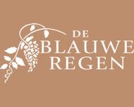 Large_bruidsbloemen_zundert_deblauweregen_logo