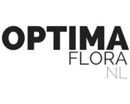 Large_bruidsbloemen_nijkerk_optimaflora_logo